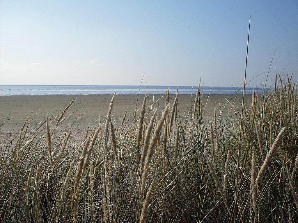 Hintergrundbild strand kostenlos