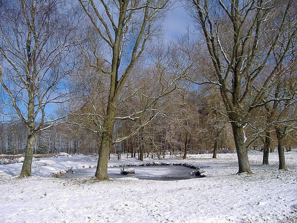 Winter Hintergrundbild
