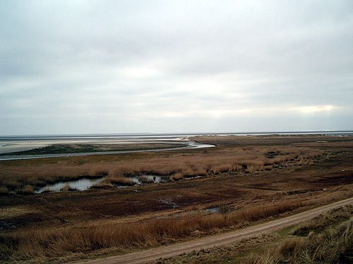 Insel Fanoe in Daenemark