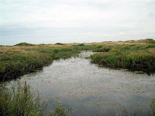 Insel Fanoe in Dänemark