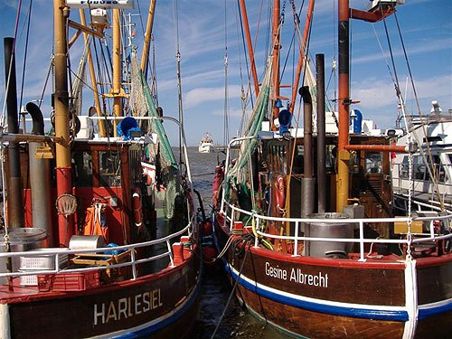 Fischkutter - Nordsee - Ostfriesland
