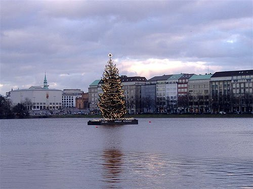 Die Alstertanne - Weihnachtsbaum Hamburg Alster