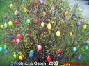 kostenloses Hintergrundbild zu Ostern