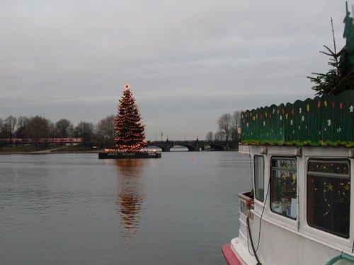 Alstertanne - Weihnachtsbaum in Hamburg