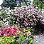 Lea-Gardens-England-2