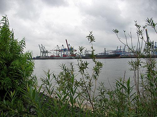 Elbe und Hamburger Hafen