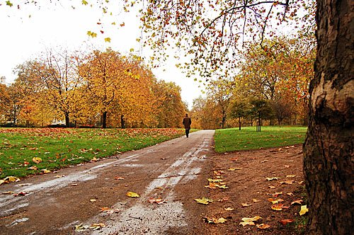 Herbst in London im Hyde Park