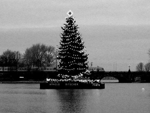 Alstertanne - Weihnachten in Hamburg