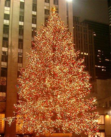 Weihnachtsbaum Rockefeller Center Ney York