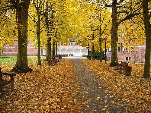 Herbst Bilder Galerie